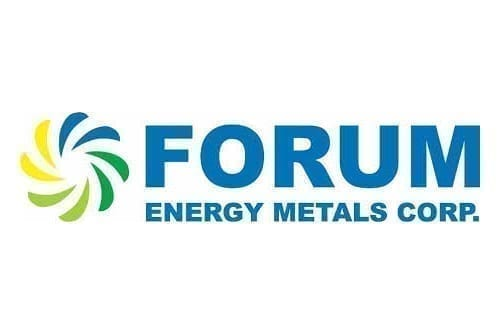 Forum Provides Mid-Year Update and Plans for 2021