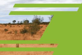 Elevate Uranium: Carbon-Free Energy
